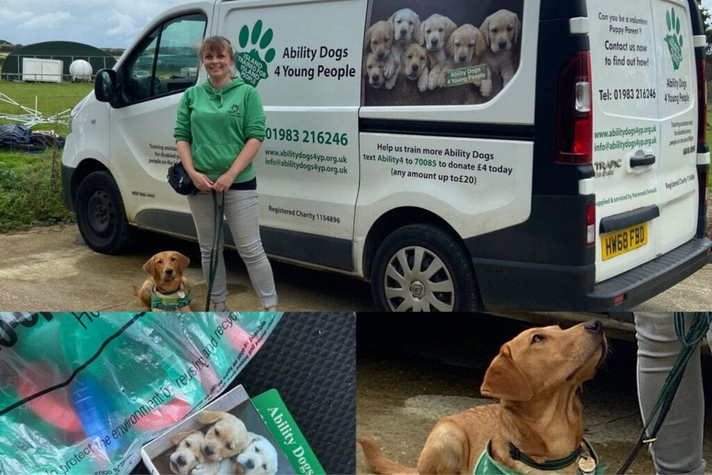 Ability dogs and van isle of wight charity